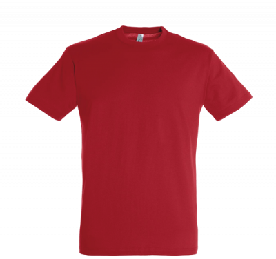 gallery/cadst11380-c_tee shirt couleur - express